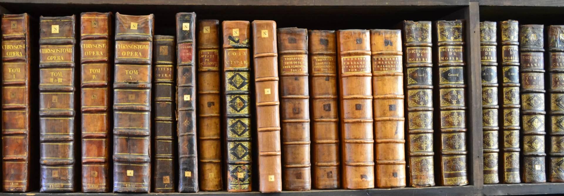 Üdvözöljük a Szatmári Római Katolikus Egyházmegye könyvtárának honlapján!